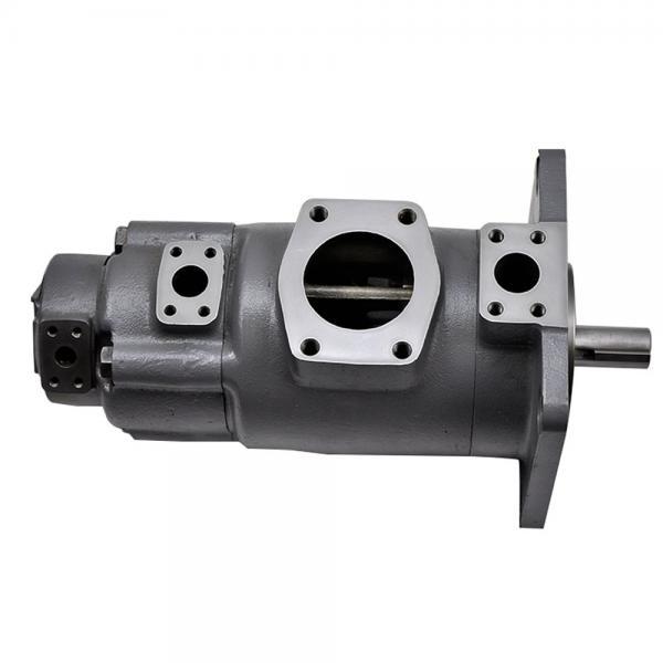 Yuken  PV2R12-19-59-F-RAA-40 Double Vane pump #1 image