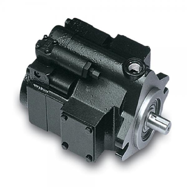 PAKER PV140 R1K1T1NMMC Piston Pump #2 image